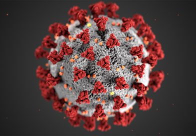 Coronavirus: bollettino del 3 dicembre 2020